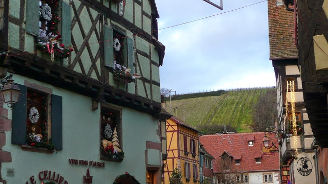 Riquewihr, hillside vineyards beside town