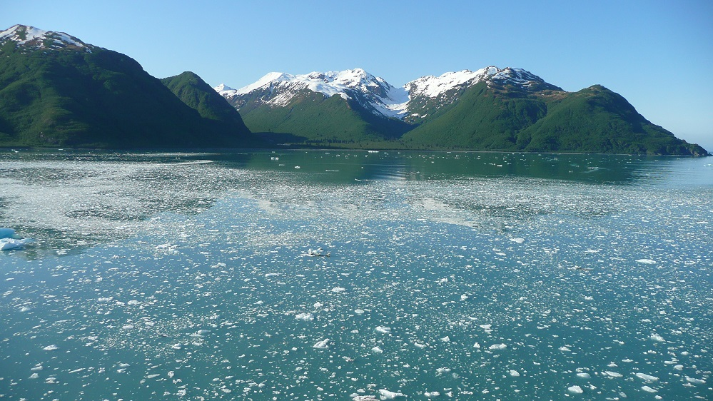 icy waters of Yakutat Bay Alaska
